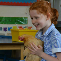 Eggciting times in Year 2